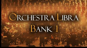 Orchestra Libra Bank 1 Registrierungen