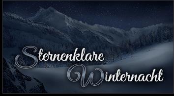 Sternenklare Winternacht