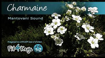 Charmaine Mantovani - Lernpaket Fit4KeysTyros5