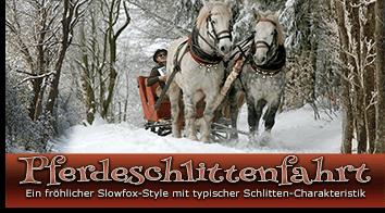 Pferdeschlittenfahrt Style
