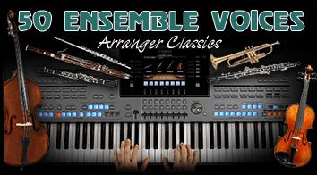 30 Orchestral Ensemble Voices